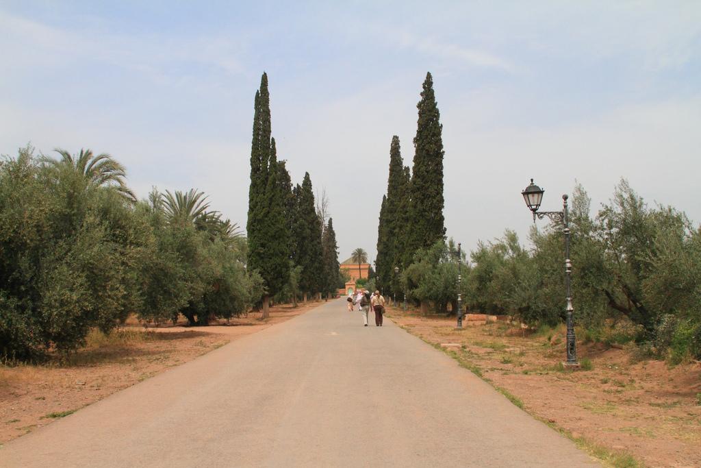 Сады Менара, аллея