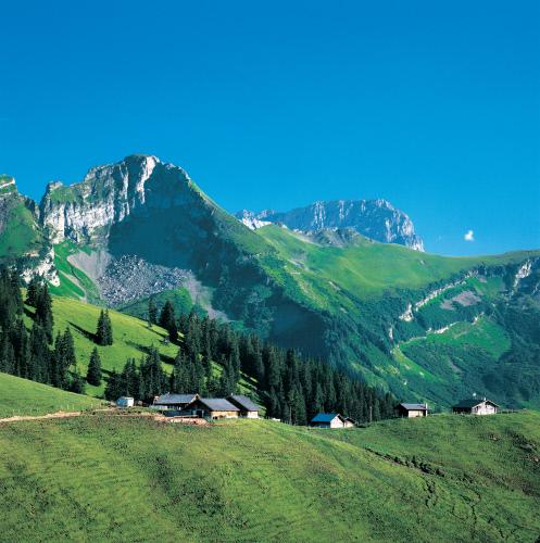 Альпийский поселок вблизи вершины перевала, Дьяблере-Виллар.jpeg