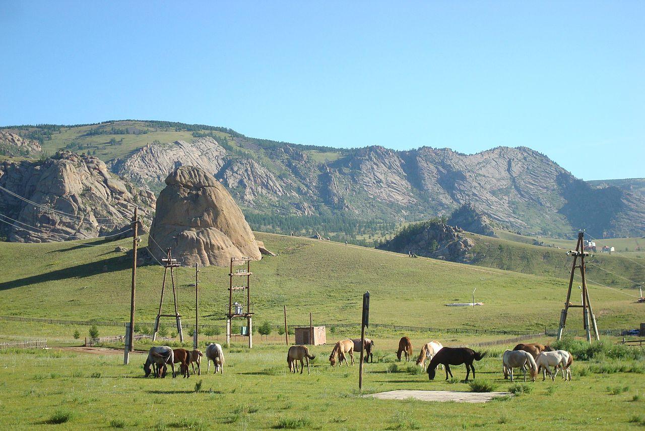 принес фото и картинки монголии собственный магазин один