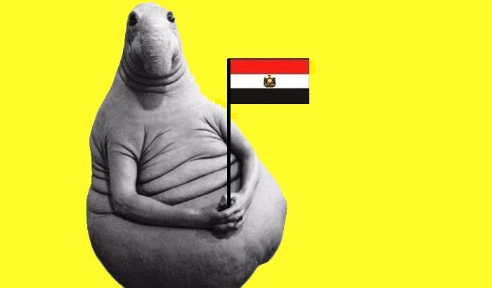 2 В Египет самостоятельно как организовать и насколько это законно.jpg