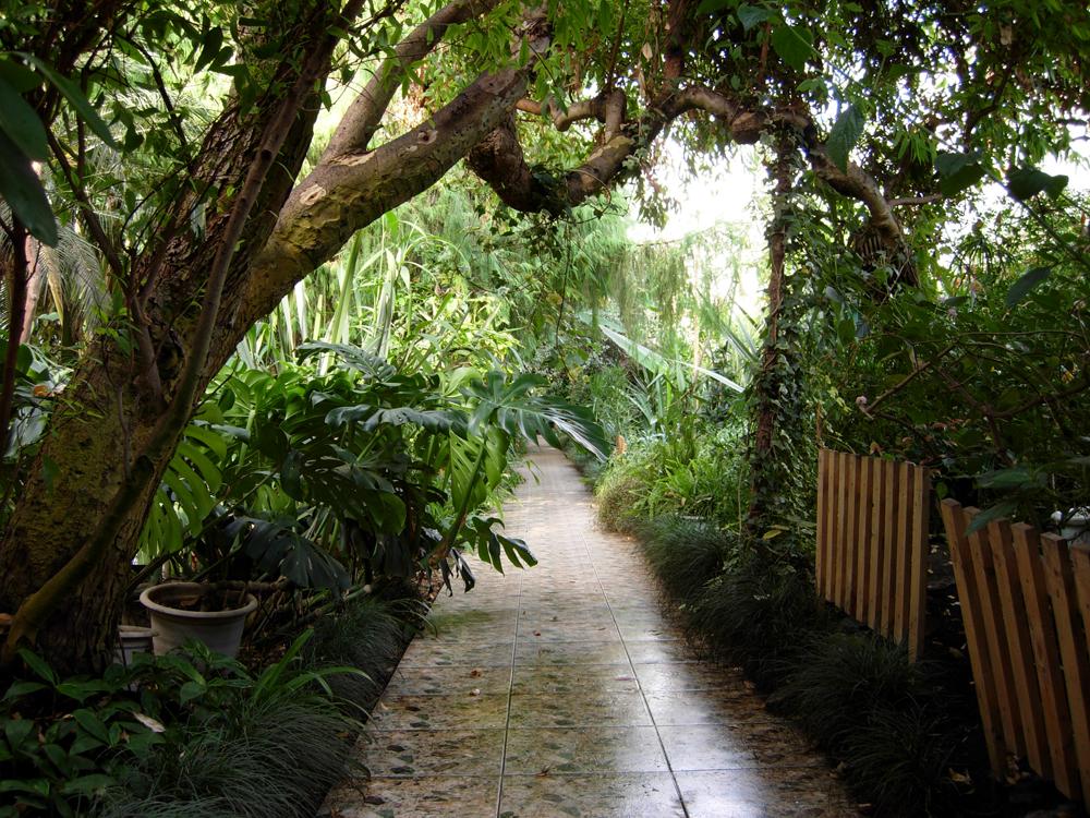 Фото в ботаническом саду уфа