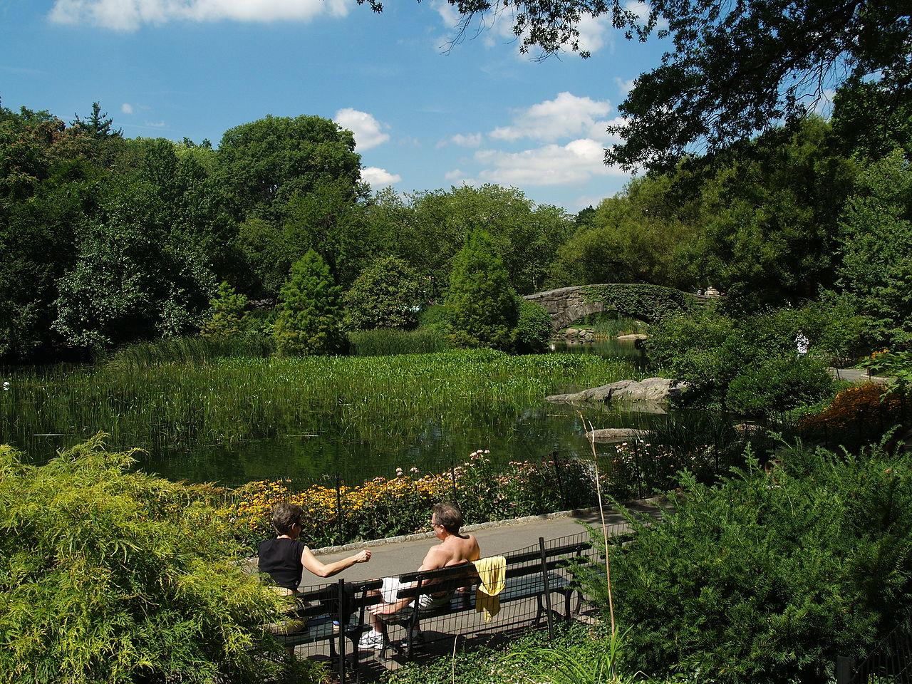 Центральный парк Нью-Йорка на острове Манхэттен