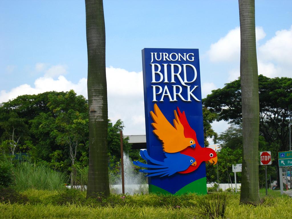 Добро пожаловать в парк птиц Джуронг, Сингапур