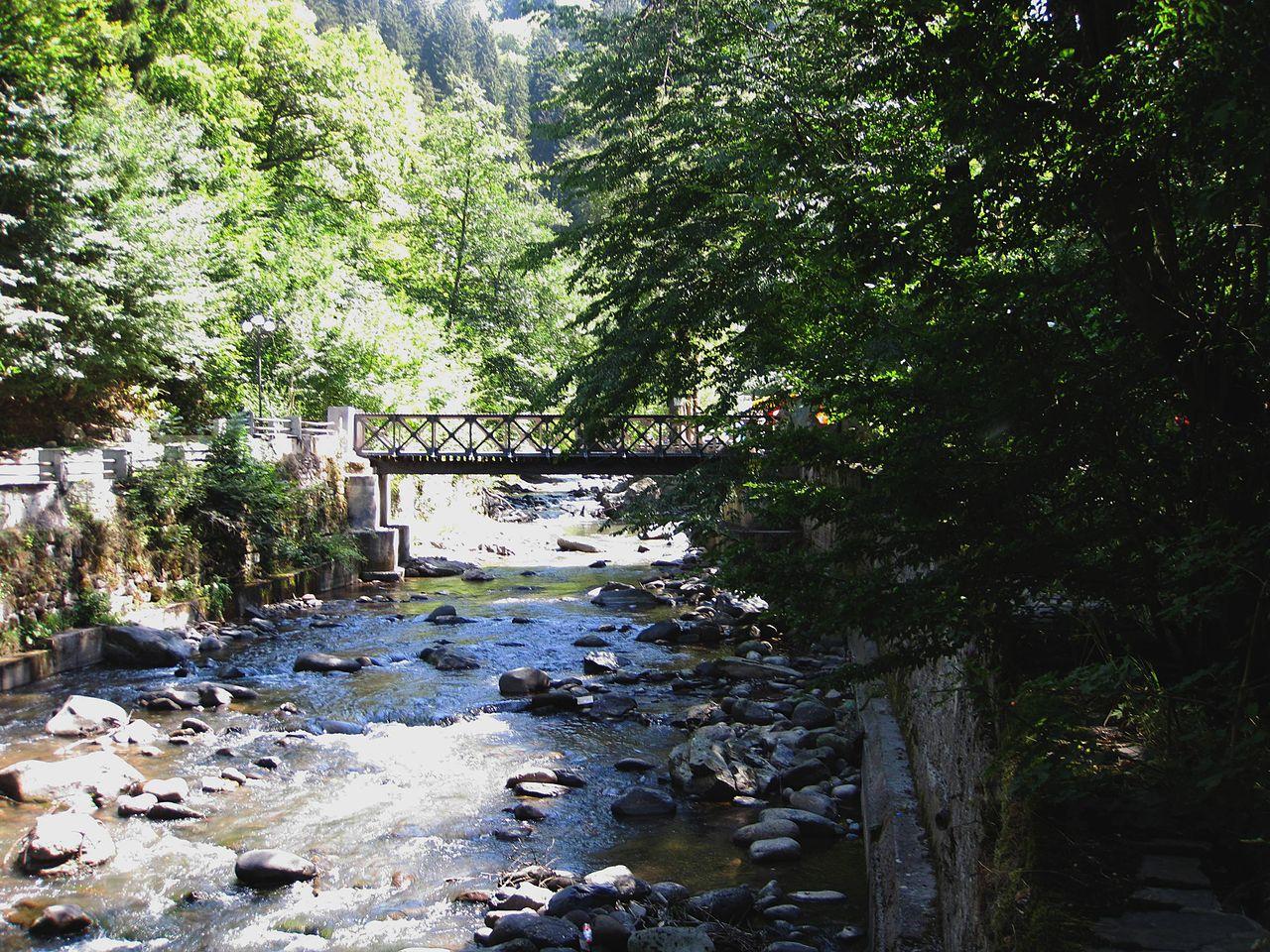 Национальный парк Боржоми-Харагаули, мост над рекой