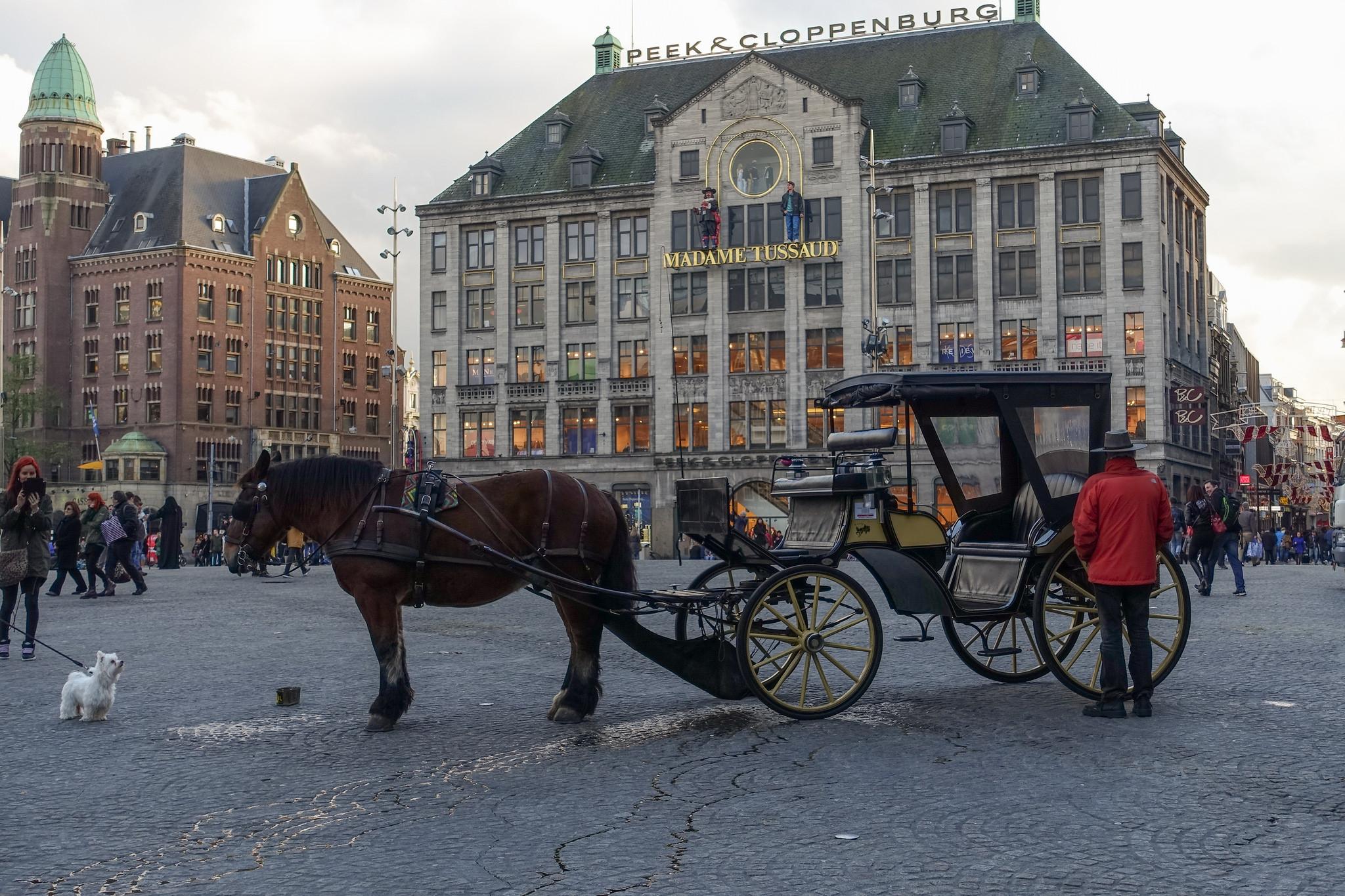 Площадь Дам в Амстердаме, Музей мадам Тюссо