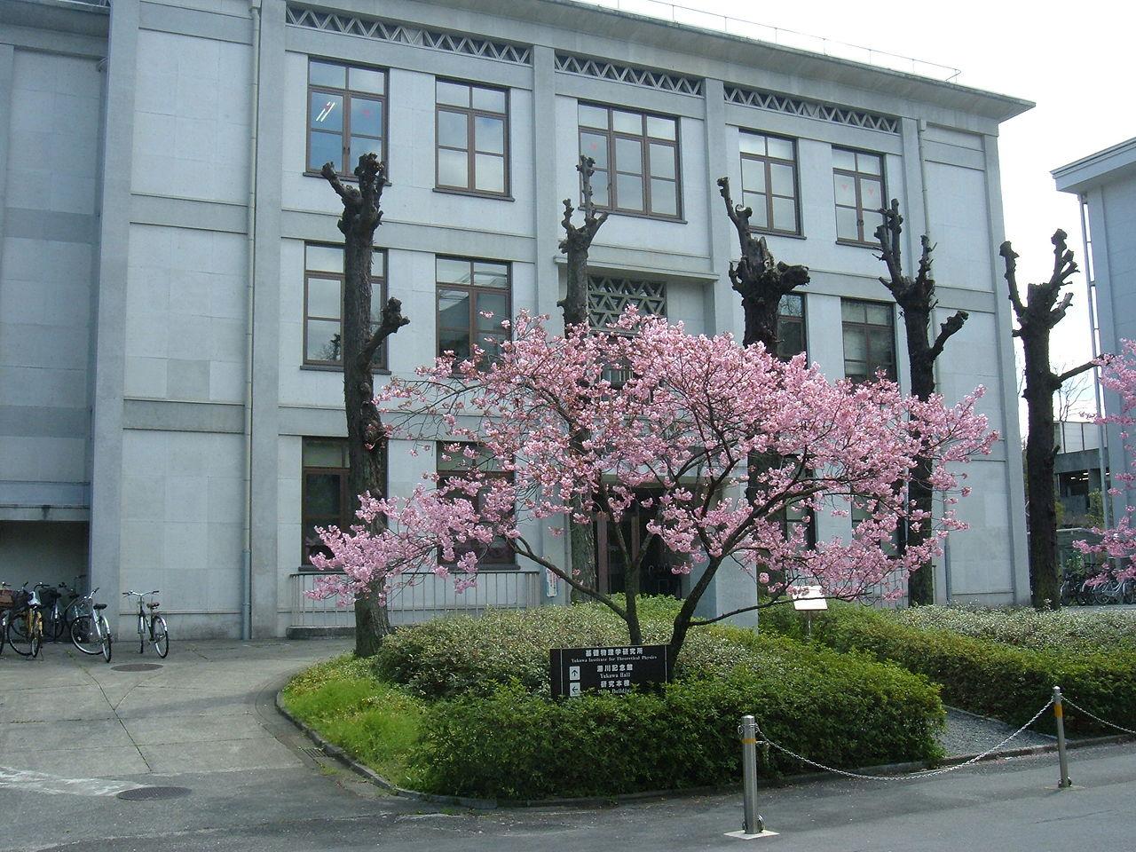 Институт теоретической физики в Университете Киото