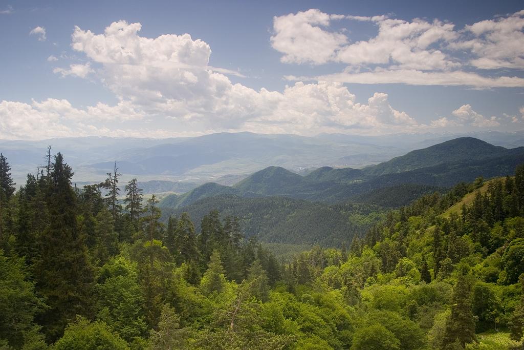 Национальный парк Боржоми-Харагаули, Грузия