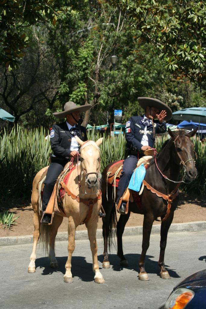 Конная полиция в Мехико