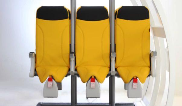 Авиакомпании хотят внедрить стоячие места 4.jpg