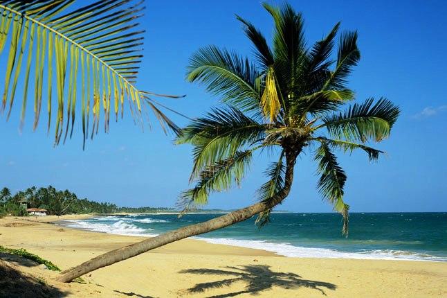 9 райских пляжей Tangalle 2.jpg