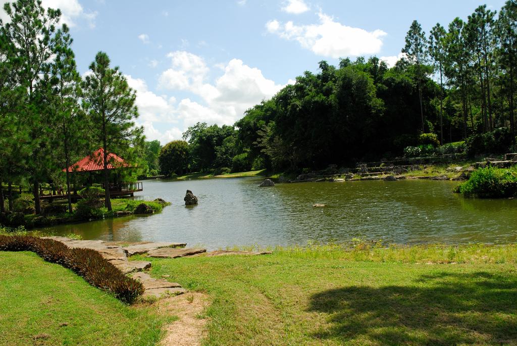 Национальный ботанический сад, пруд