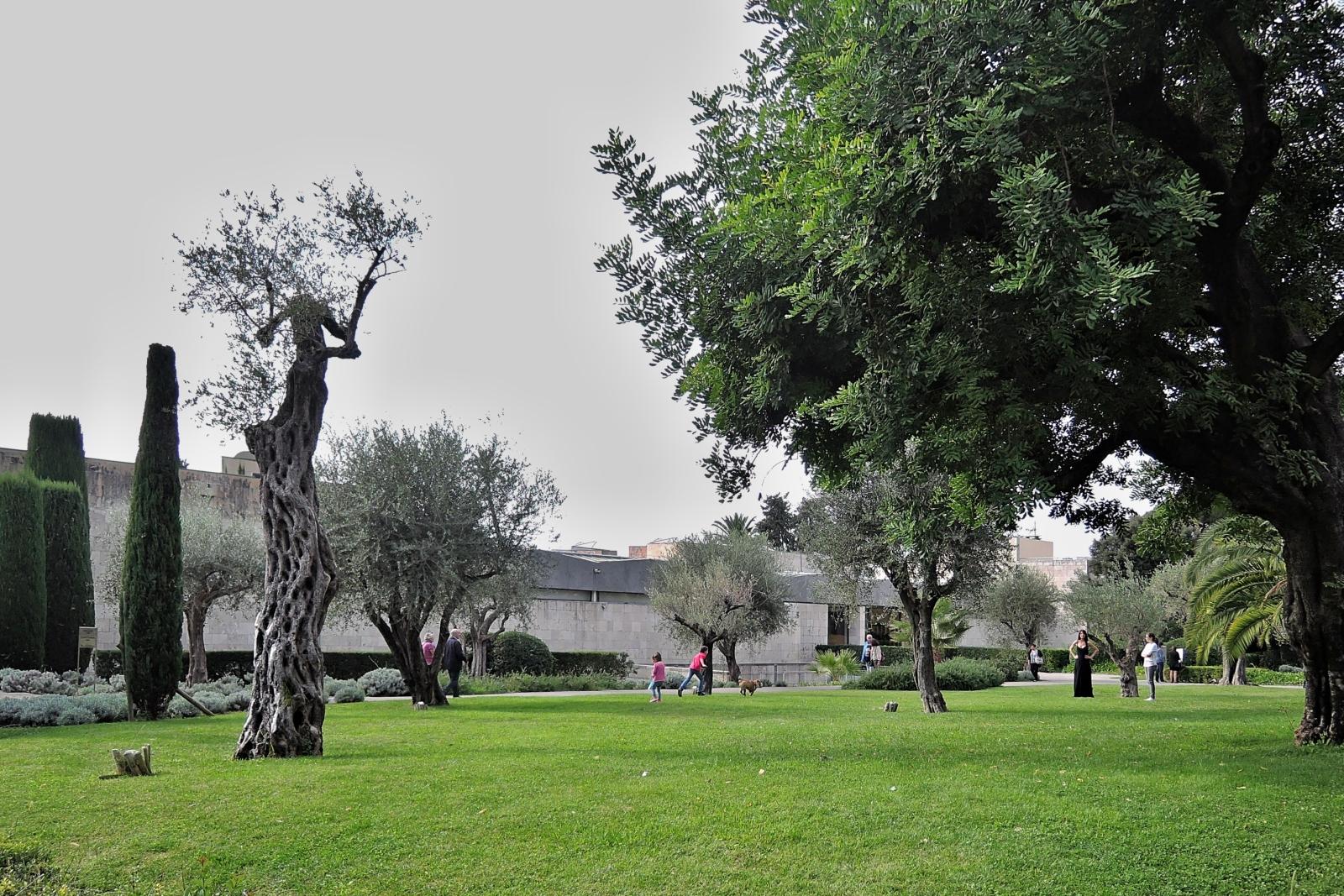 Вид на музей Шагала в Ницце