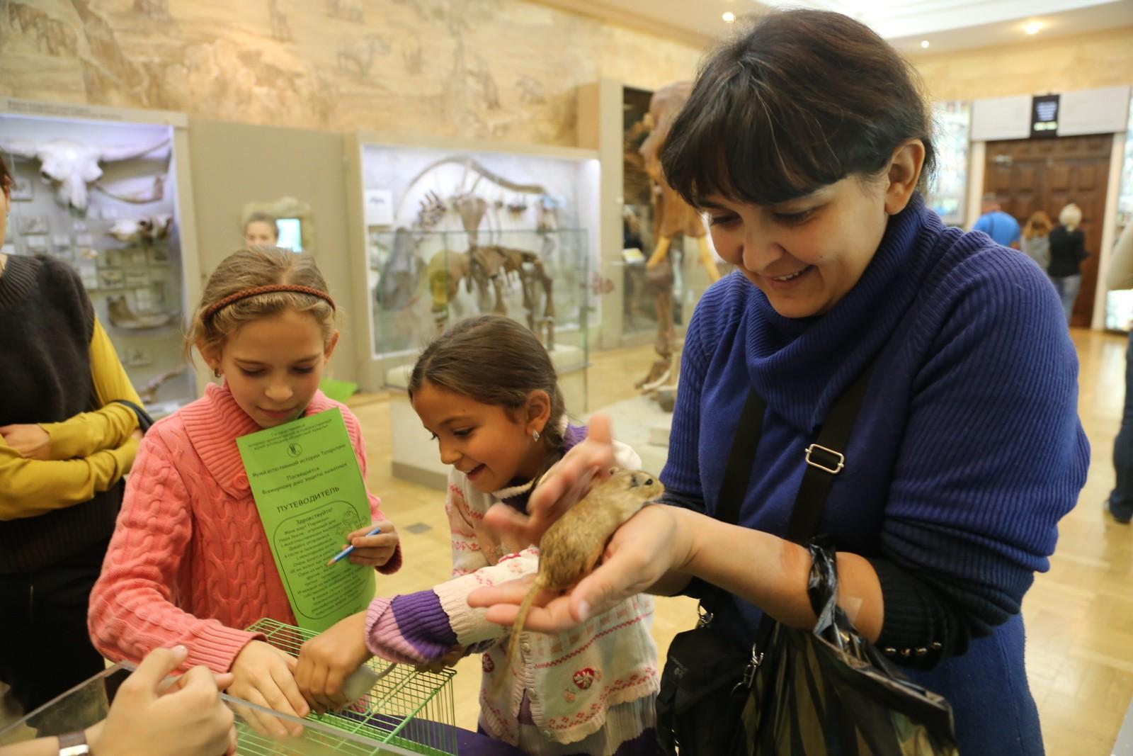 Музей естественной истории Татарстана, зал «Мир млекопитающих»
