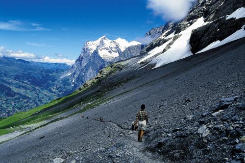 У подножия горы Эйгер, Гриндельвальд.jpeg