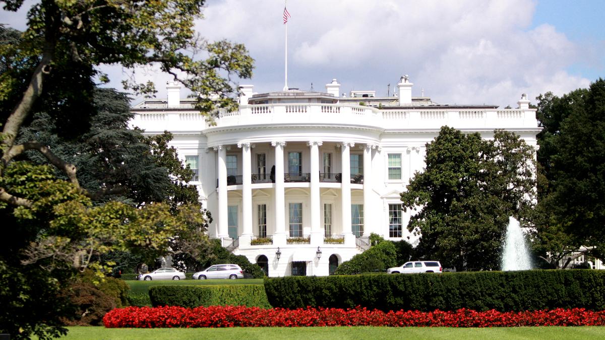 Реферат на тему белый дом в сша 5094