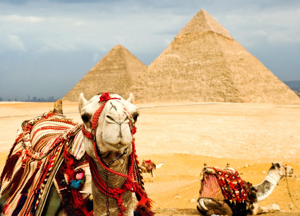 Как работают туристические компании (поездки в Египет)