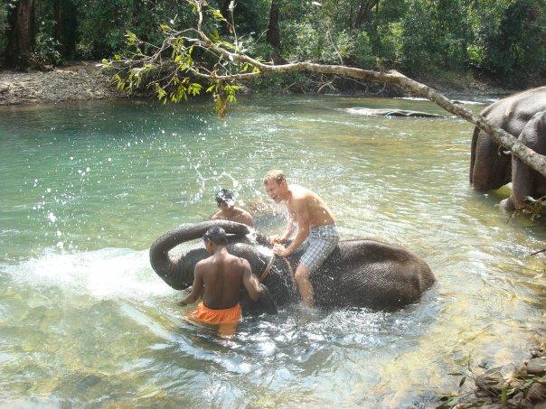 Катание на слоне, Гоа.jpeg
