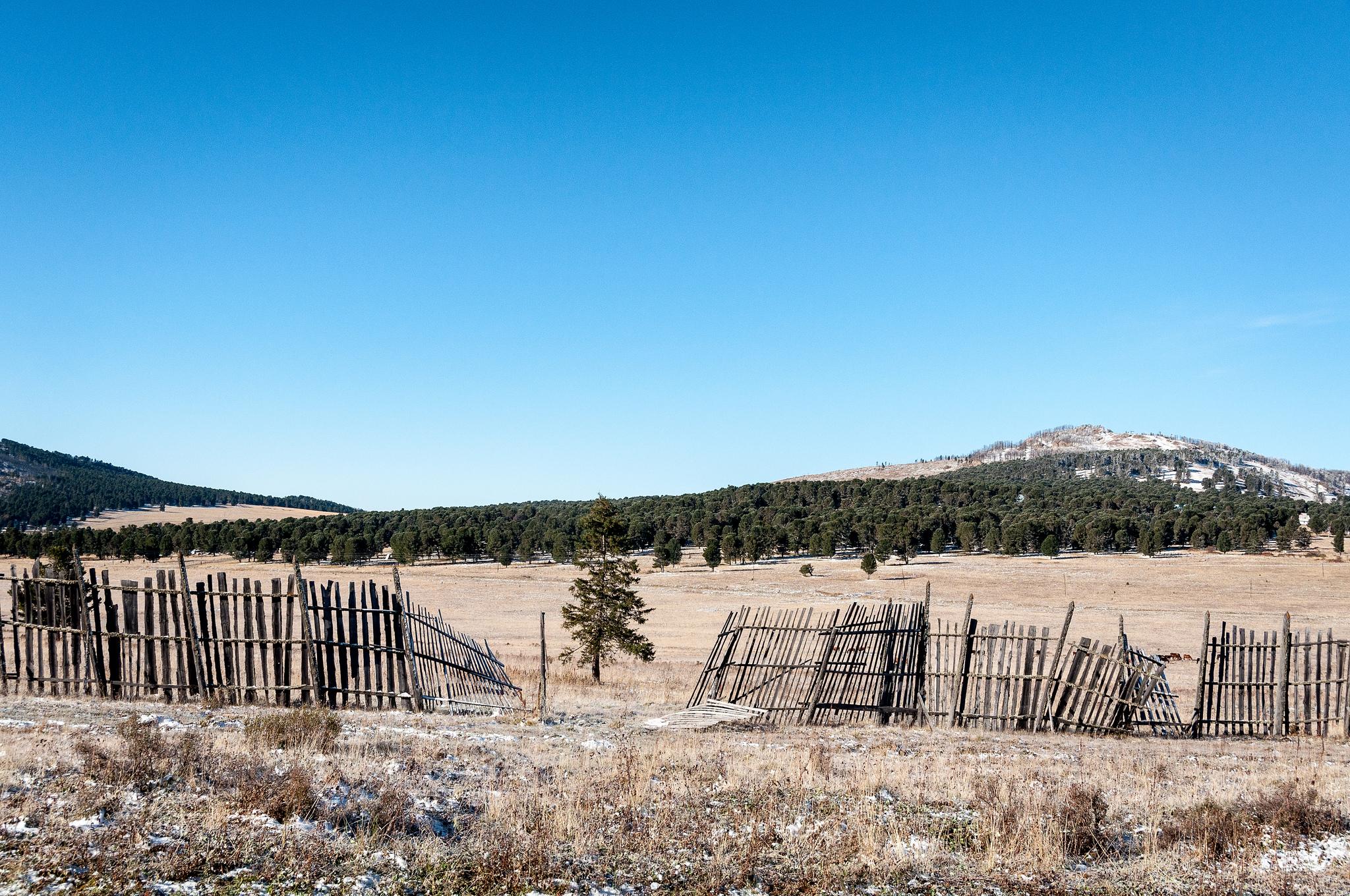Покосившийся забор, Семинский перевал, Алтай