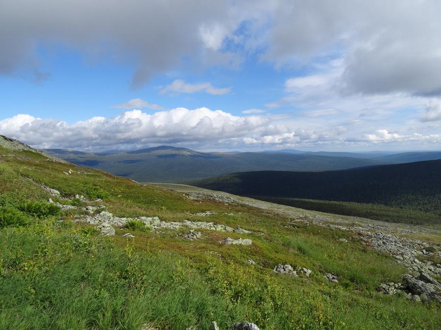 Перевал Дятлова летом