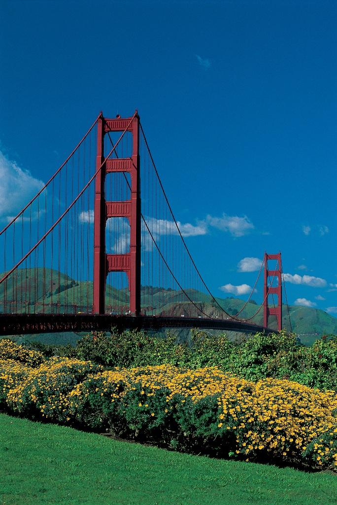 Клумбы в парке Золотые Ворота в Сан-Франциско