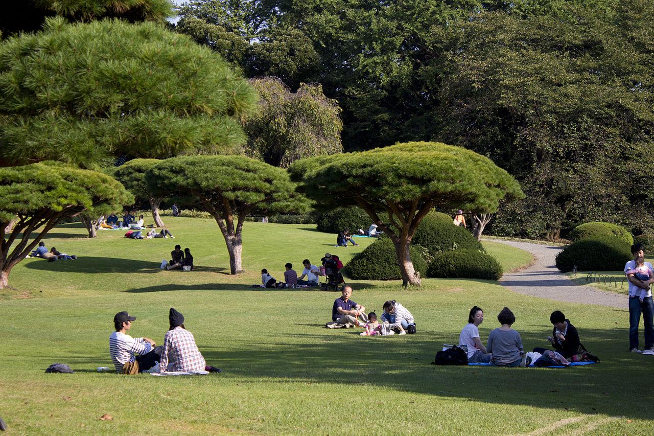 Синдзюку-Гёэн (Императорский парк Синдзюку)