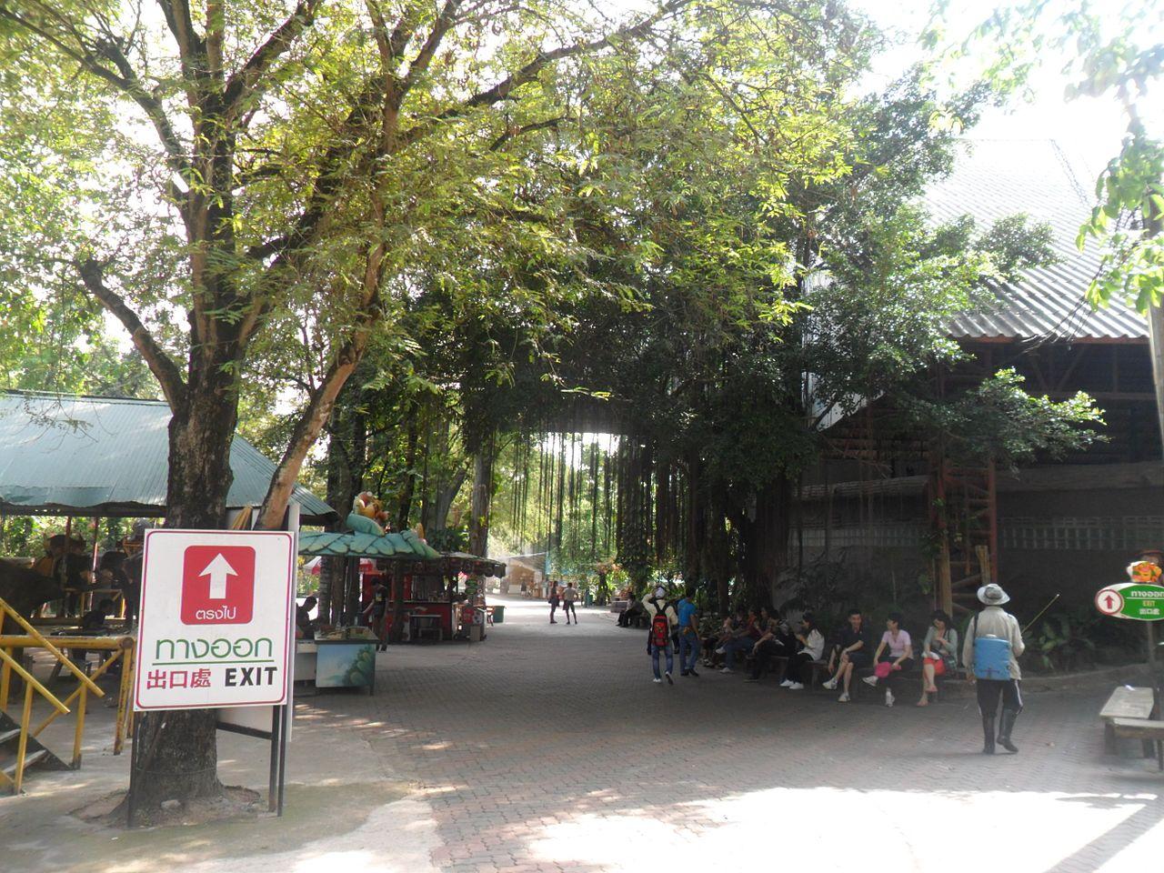 Тигровый зоопарк Сирача, вход