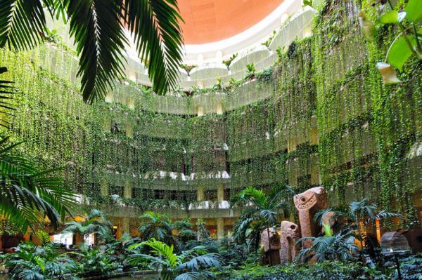 Гостиницы Варадеро цены на бронирование отелей