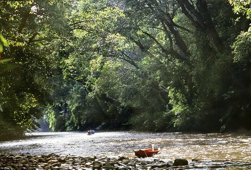 ecotourism in malaysia The kuala lumpur ecotourism scene is a vital part of the city's travel activities, with extensive national parks and protected areas around kl drawing in thousands of tourists each year.