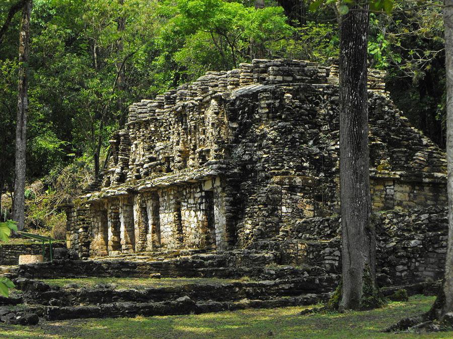 Величественные руины Майя