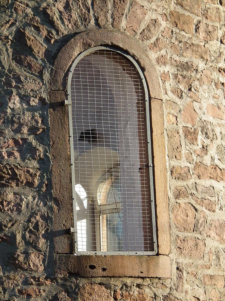 Окно в башне аббатства Нойбург, Германия