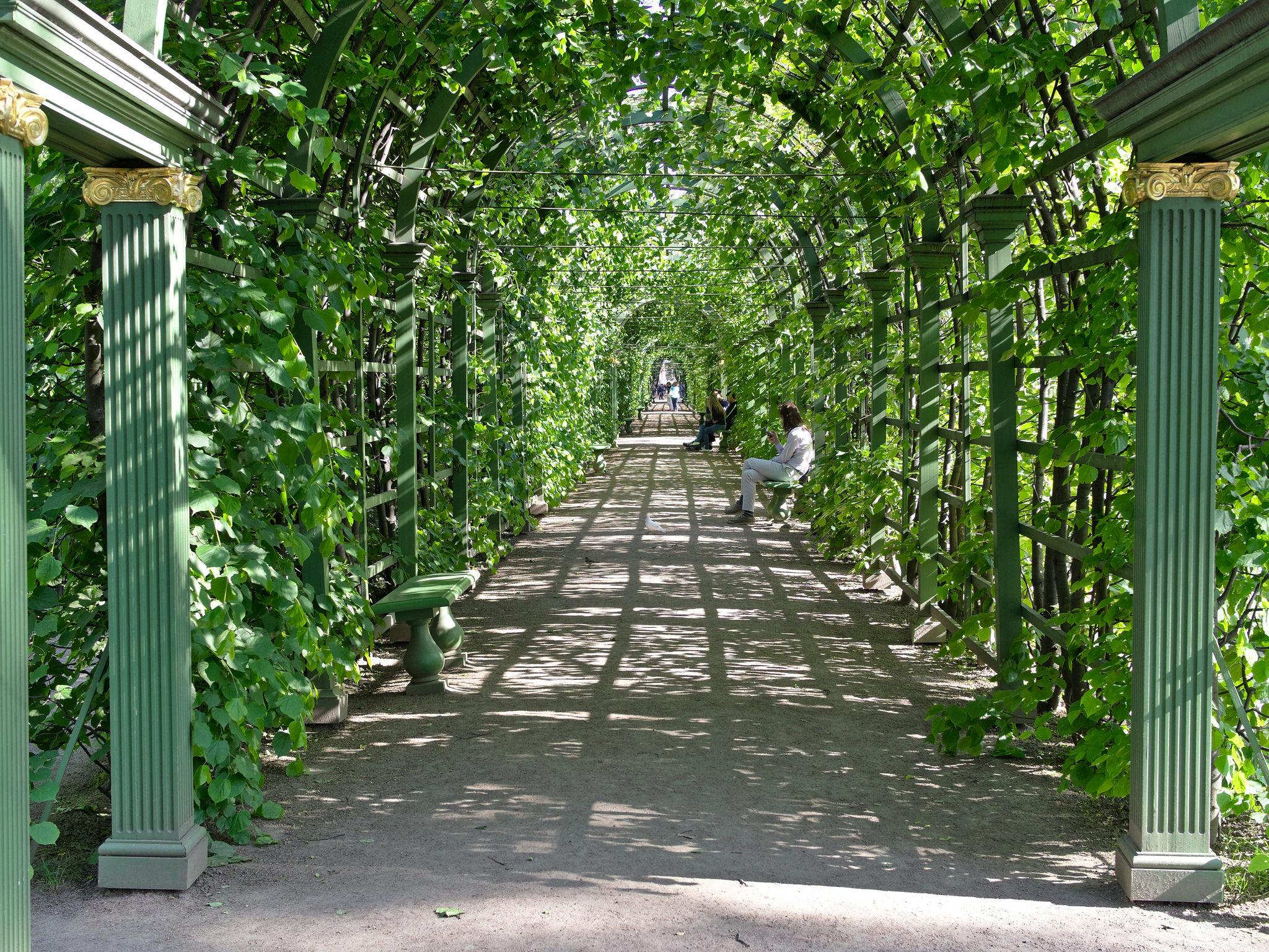 В летнем саду, Санкт-Петербург
