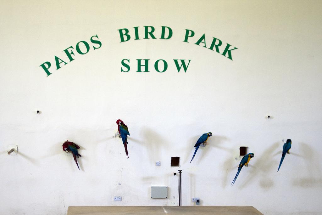 Парк птиц, на Пафосе