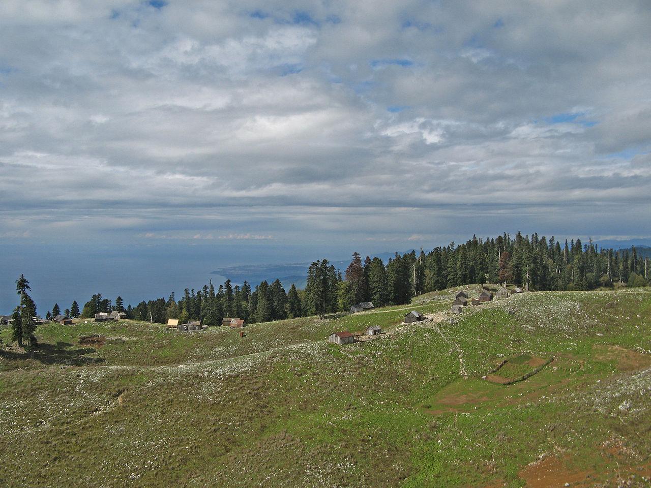 На горе Мамдзышхе, Абхазия