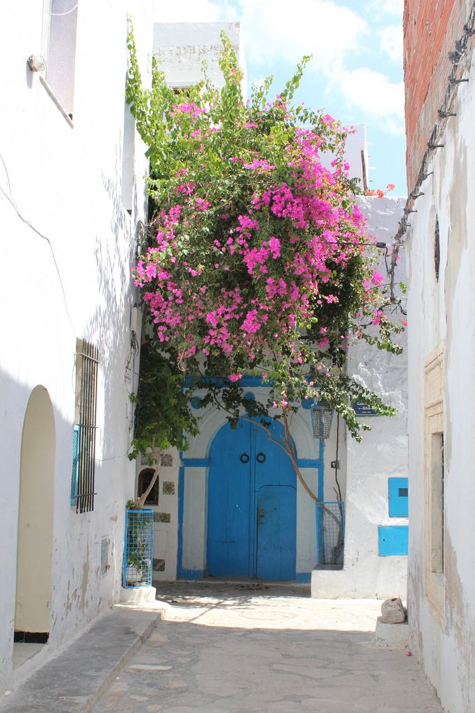 Медина Хаммамета, вход в жилище