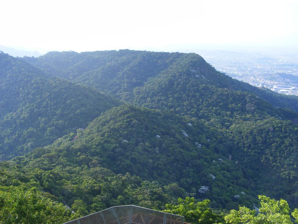 Вид на лес Тижука, Рио-де-Жанейро