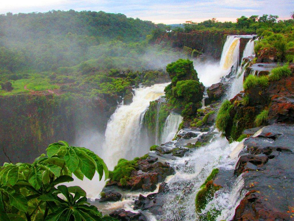 Картинки по запросу Амазония