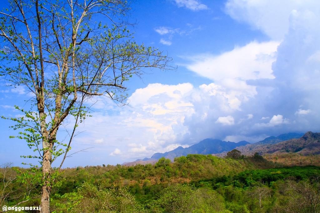 Национальный парк Бали-Барат на острове Бали, Индонезия