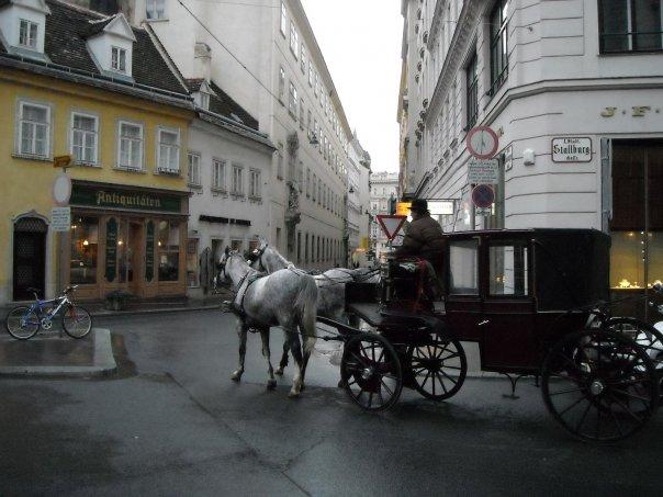 Лошади в Вене равноправные участники движения, Австрия.jpg