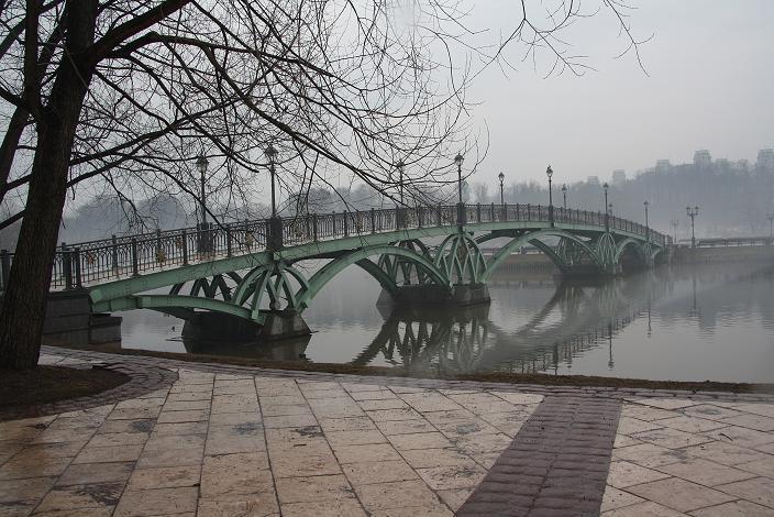 Панорама моста в Царицыно