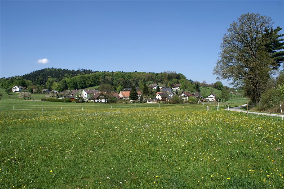 Шварцвальд, деревенский пейзаж