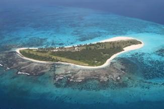 Bird Island.jpg