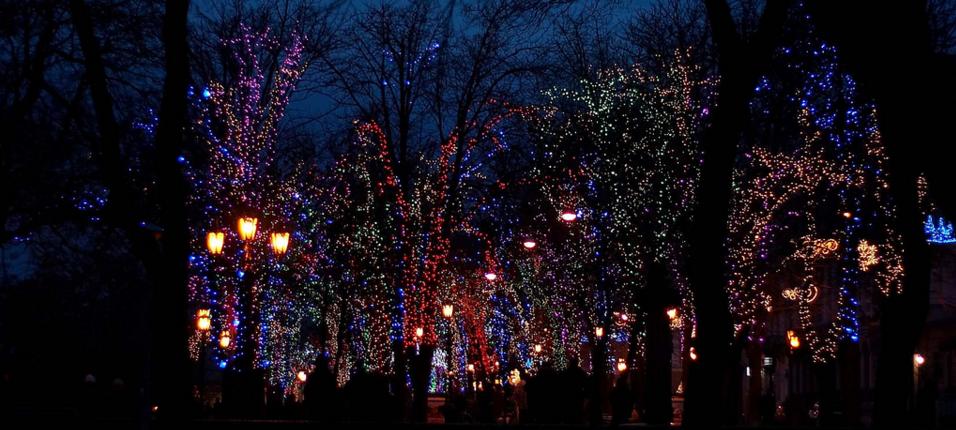 Новогодняя иллюминация на Приморском бульваре