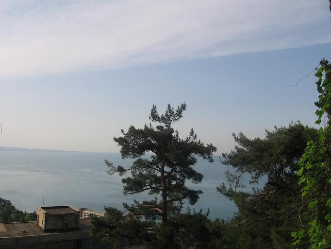 Природа в Абхазии.JPG