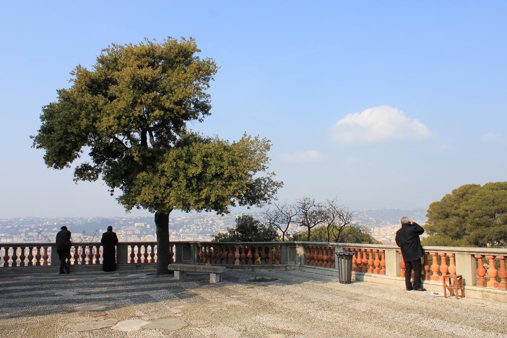 Смотровая площадка, Замковая гора, Ницца