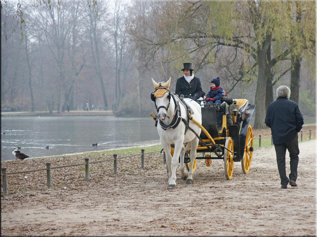 Осень в Английском саду в Мюнхене