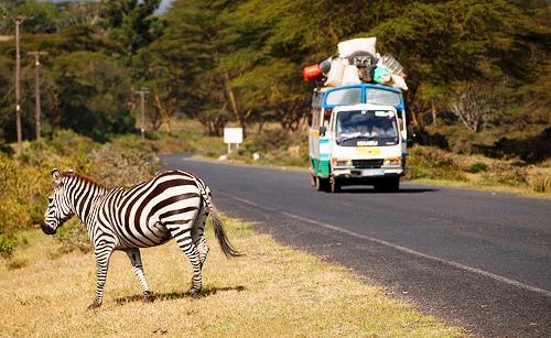 1 Правила ПДД в Кении.jpg