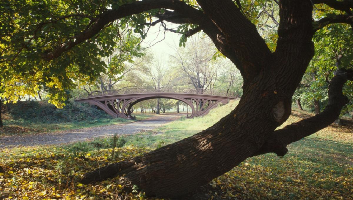 Нью-Йорк Центральный парк central park в США Фото площадь чем уникален
