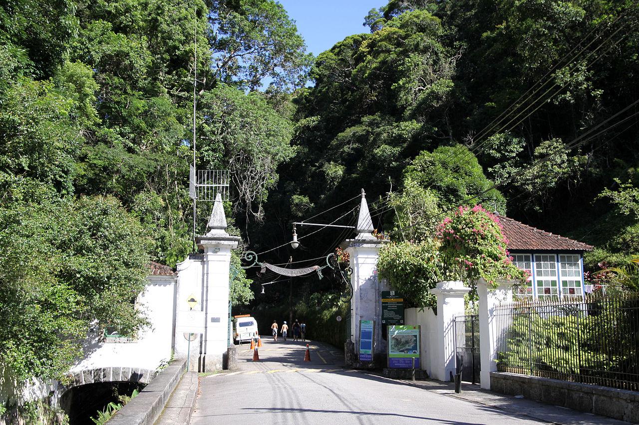 Лес Тижука, ворота