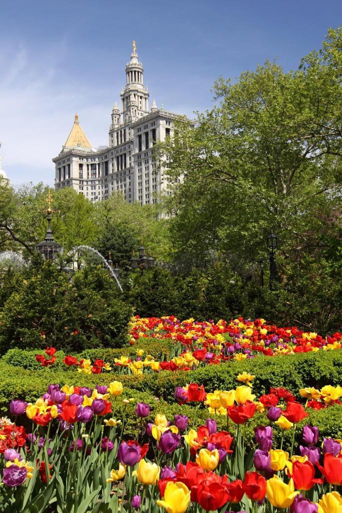 Центр Нью-Йорка Весной.jpg