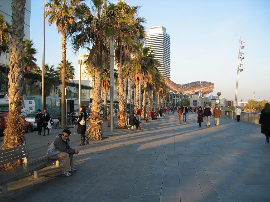 Набережная Барселонеты